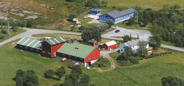 Solheim gård – hos Martin og Cecilie